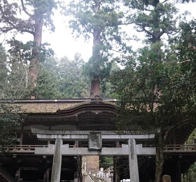 縁結び、病気平癒、子授などのご利益が頂ける由岐神社。全国的にも珍しい狛犬は国の重要文化財に指定されている。