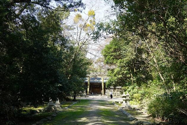 日前神宮の本殿は写真撮影禁止。鎮守の杜に包まれ、厳かな空気が漂う。