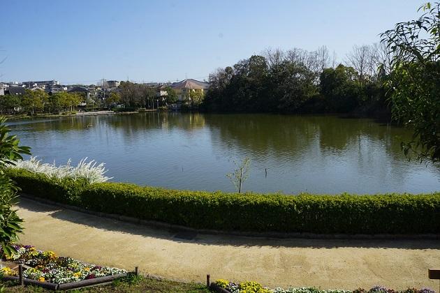 伝承の鍵を握る鏡伝池。祭事が行われたほか、天体観測に用いられたという説もある。ミステリアスな池だが、今は市民憩いの場となっている。