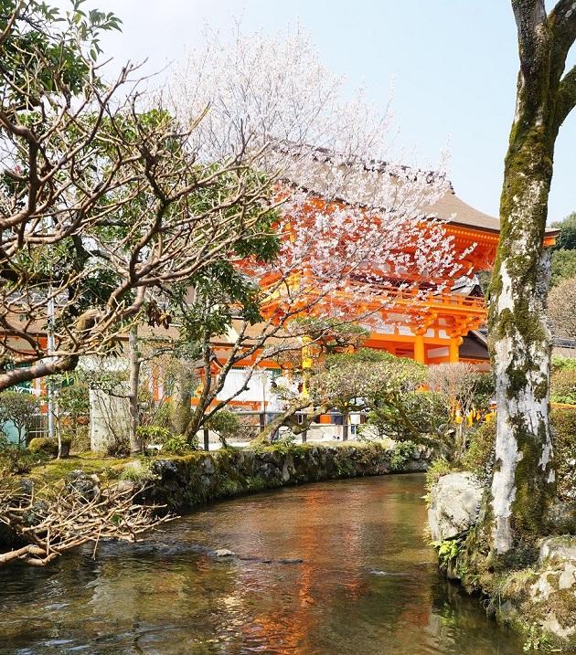 京都随一との指摘もある上賀茂神社。ゆっくりめぐりたいパワースポットのひとつだ。