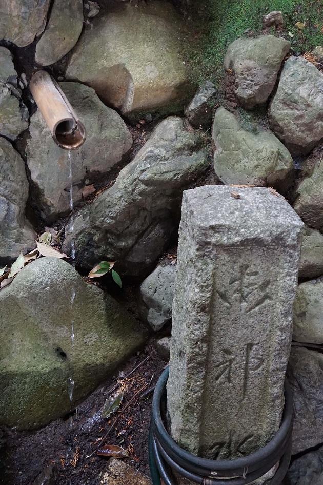 上賀茂神社と下鴨神社は川と地下水脈という「上下」でつながっている。