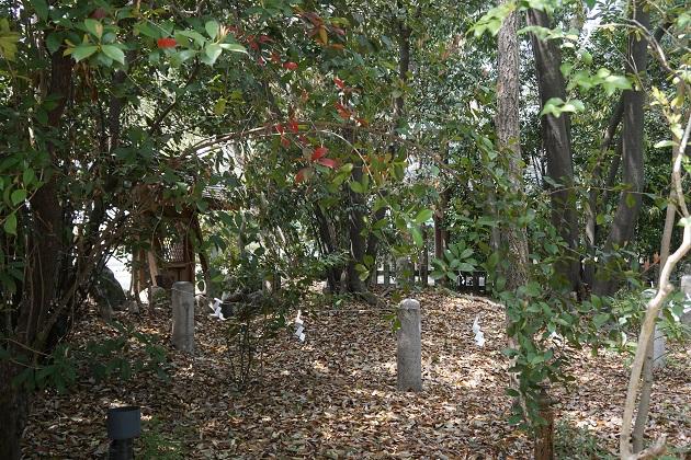 庭津火神社への参拝で、祈りの原点に近づくことができるかもしれない。
