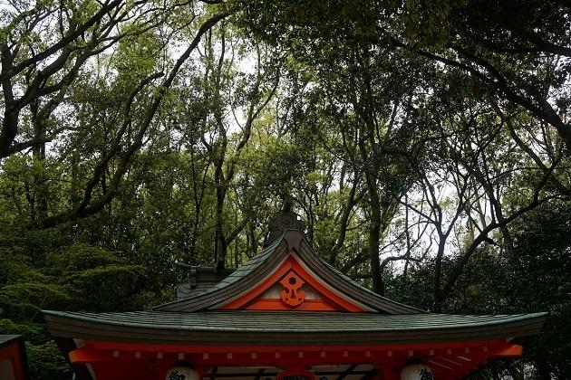 生田神社は抜群のアクセスの良さから人気が高く、外国人観光客が参拝する姿も目立つ。