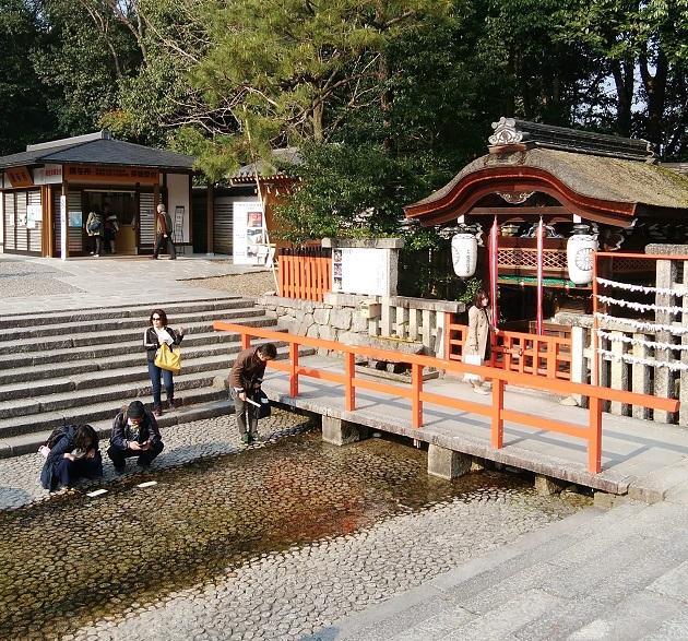 下鴨神社はみたらし団子の発祥地でもある。そんなご当地で水みくじも楽しめる。