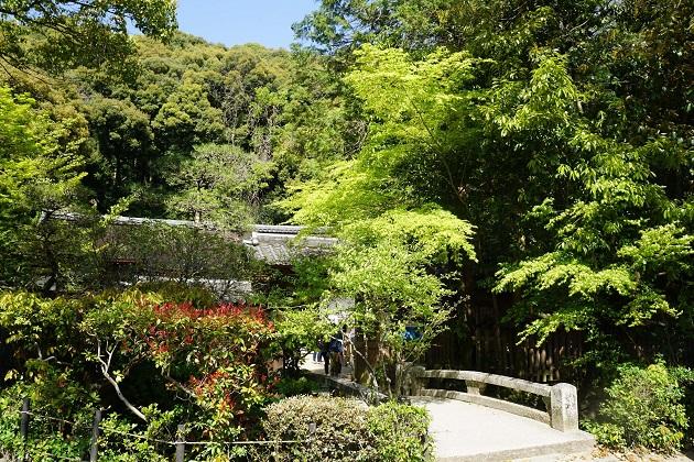 宇治上神社の境内をまたぐ橋。宇治上神社には優れたパワースポットの条件が散見される