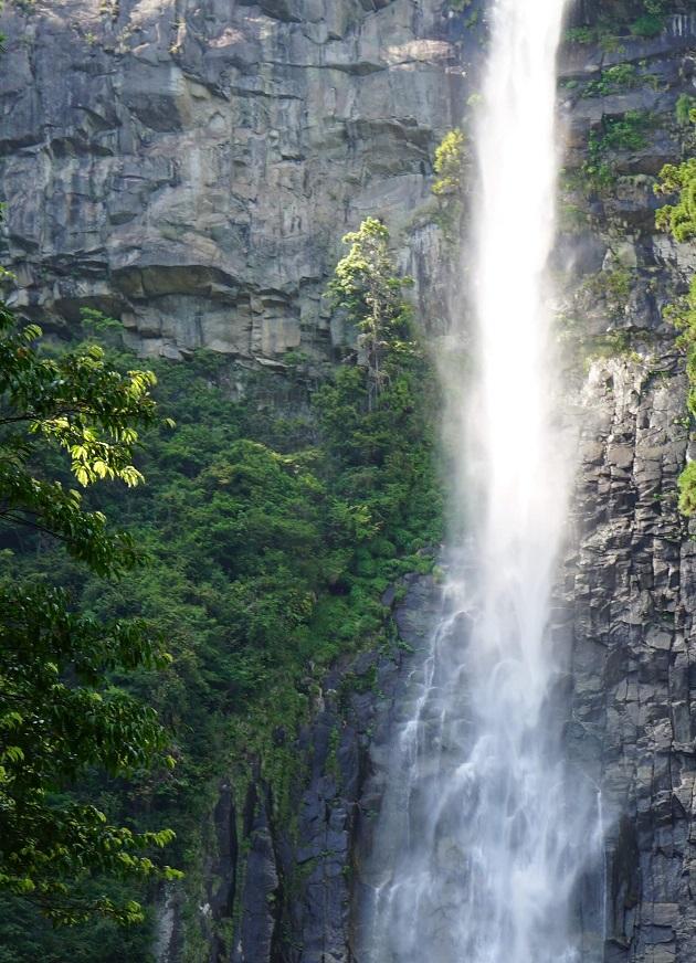 飛瀧神社ルポ【パワースポット情報-和歌山】那智の滝が御神体|延命長寿に霊験