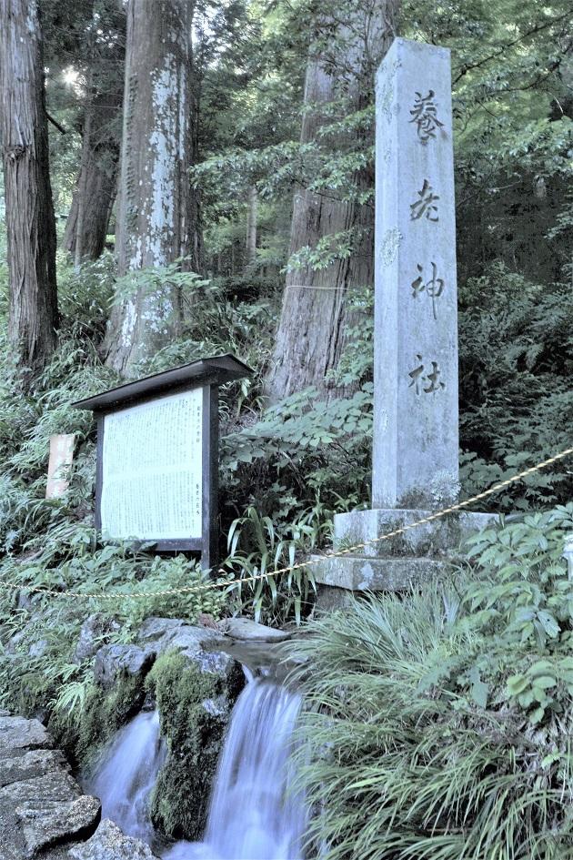 菊水泉から直接水をくむのはNG。標石直下の水をくむのが正しい取水方法となる。