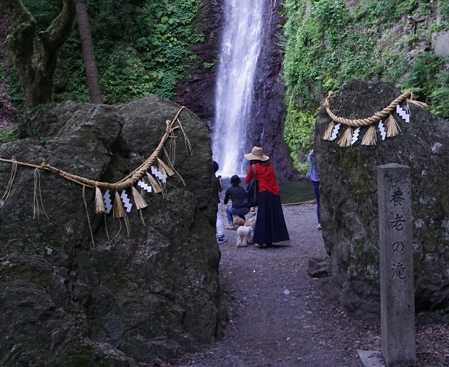 岩間の結界を抜けて滝にアクセス。この瞬間がたまらない。