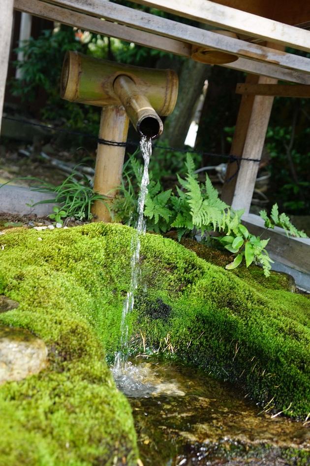 力水こそ八坂神社で押さえるべき最大のポイント