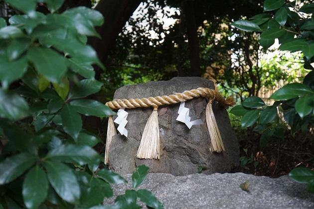 二ノ宮神社の見どころはおかげ様参りだけではない。緑豊かな神域だ。