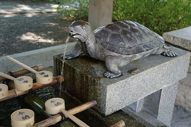 松尾大社の境内にはいたるところに神様の眷属である亀と鯉の像がある。手水舎にも亀が。よくみるとラッキーなカエルの姿も。