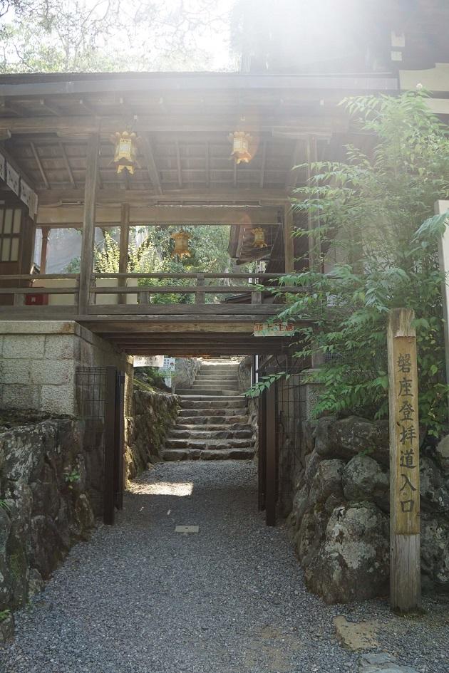 現在入山が禁止されている松尾山の入口。光が差し込み神々しい姿をみせている。