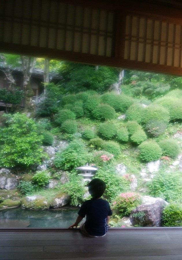 柳谷観音・楊谷寺の見事な庭園。回廊から見られる。6月は紫陽花、秋は紅葉のメッカ。