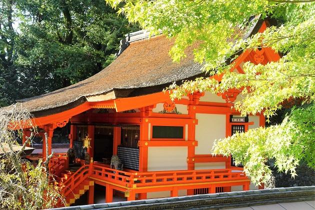 【元新聞記者が選ぶ】関西の神社おすすめ35選〈ご利益別に徹底取材〉