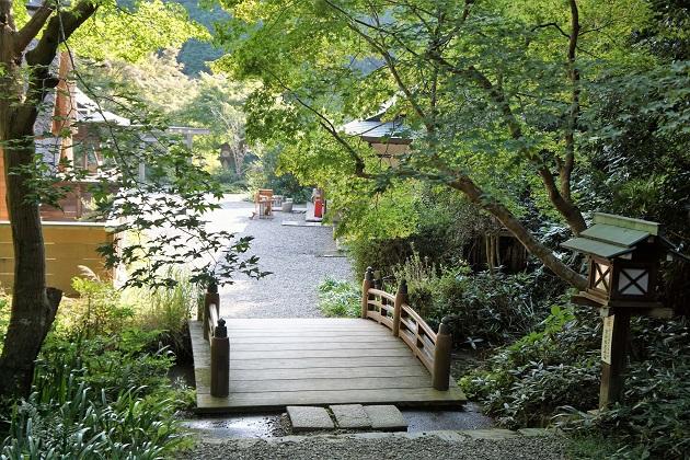日向大神宮は穴場の初詣スポット。霊泉の若水が頂ける。