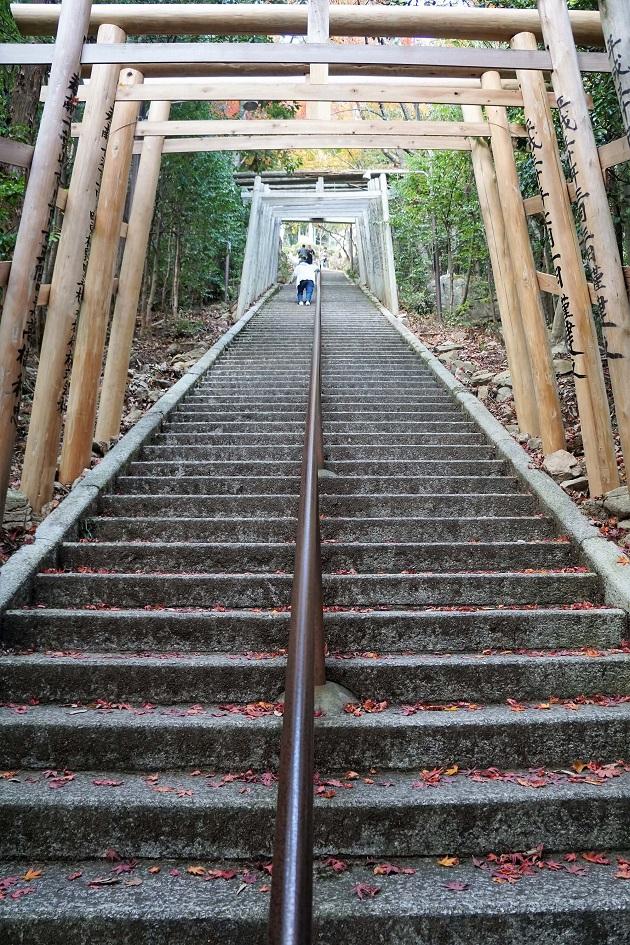 本殿の参拝には742段の石段を上らねばならない。かなり傾斜がきつい。