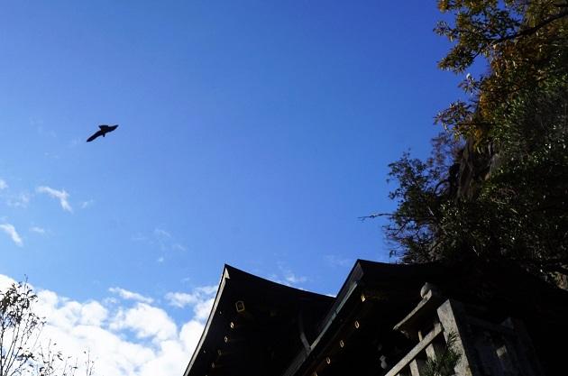 本殿の天空に舞う猛禽類が神々しさを引き立てていた。