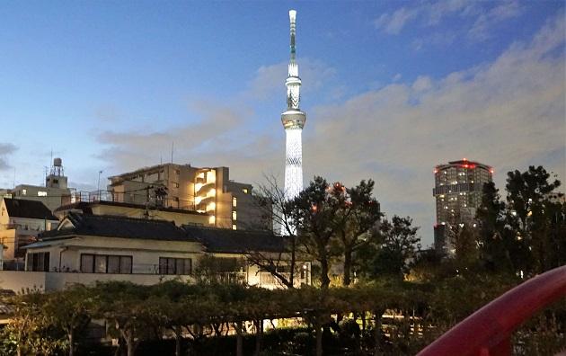 東京都内【最強】パワースポット|凄腕の鍼灸師明かす|現地取材