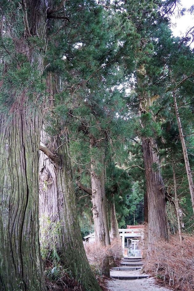 【高天彦神社】奈良の隠れパワースポット<タカミムスビの社・レポ>駐車場や御朱印情報も