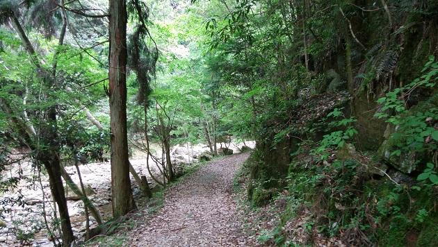 龍鎮神社の参道。傾斜はない。