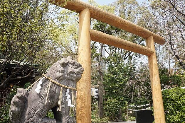 狛犬がにらみをきかせる堀越神社境内入り口。