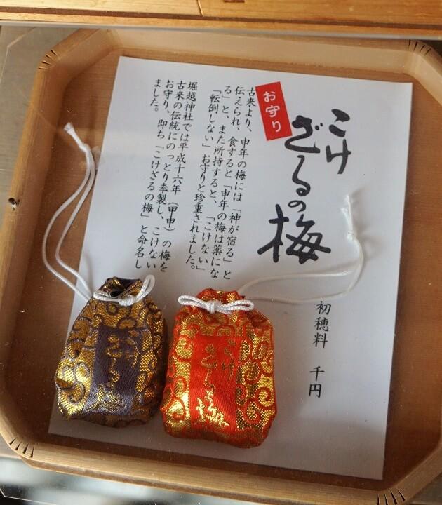 こけざるの梅。堀越神社はお守りが充実している。