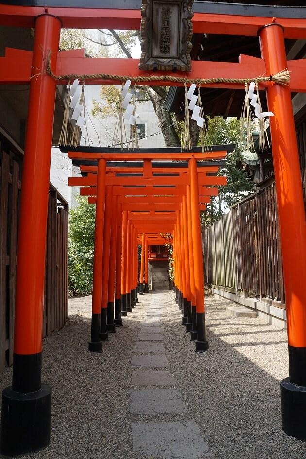 茶臼山稲荷神社の外観。鳥居が連なる。