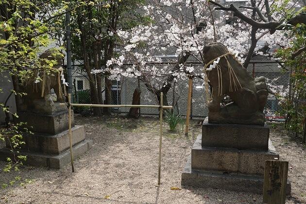 昔の正面玄関を示す狛犬の像。明治まで堀があった。
