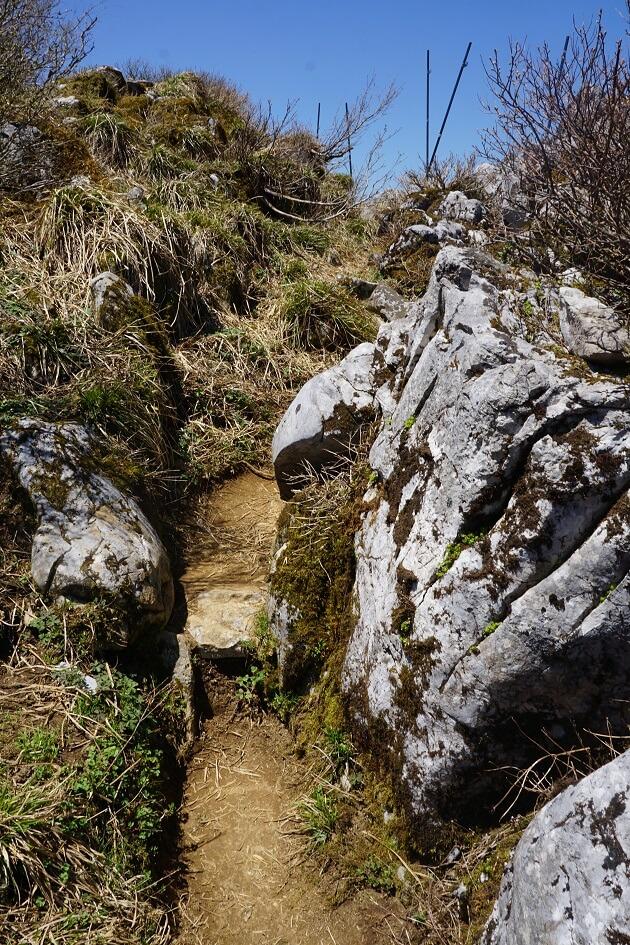 ごつごつとした岩肌がむき出しになっている登山道のようす