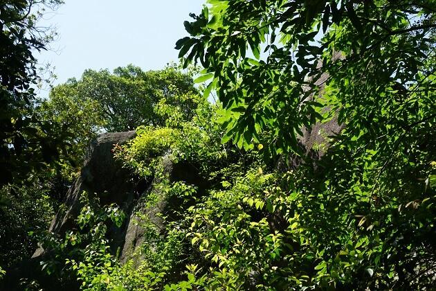 越木岩神社【パワースポット/レポ/西宮】岩に日が差すと願い叶う!?巨大磐座,ご利益,御朱印,駐車場も