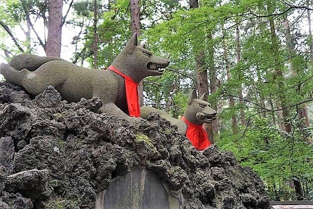 霊狐塚の溶岩に陣取る一対の白狐像