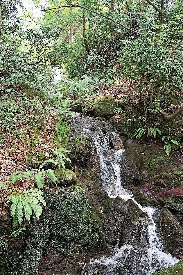 白山比咩神社の表参道にある琵琶滝