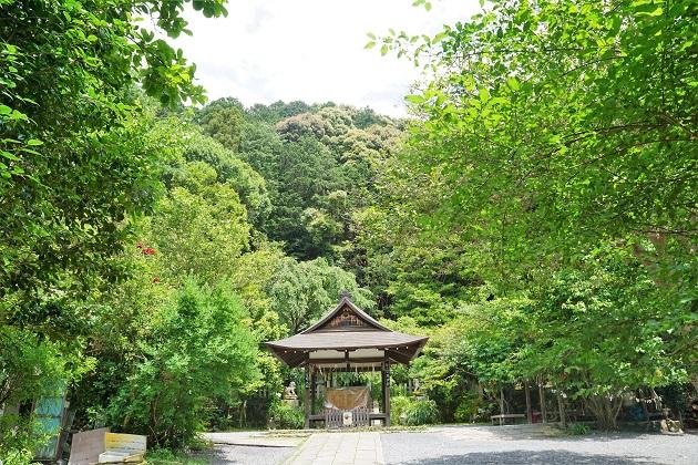 神体山「椿ヶ峰」を背に鎮座する大豊神社