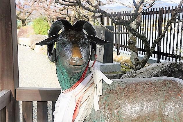 虚空蔵菩薩の使いとされる虚空蔵法輪寺の羊の像